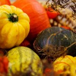 A Tax Marketing Thanksgiving Thought