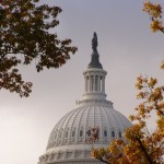Immunity from politics -- and client departures